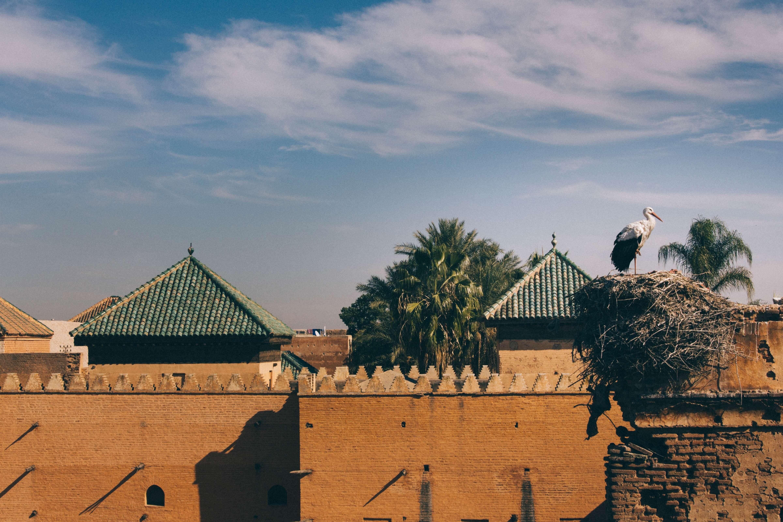 Tips voor een low budget citytrip naar Marrakesh, Marokko