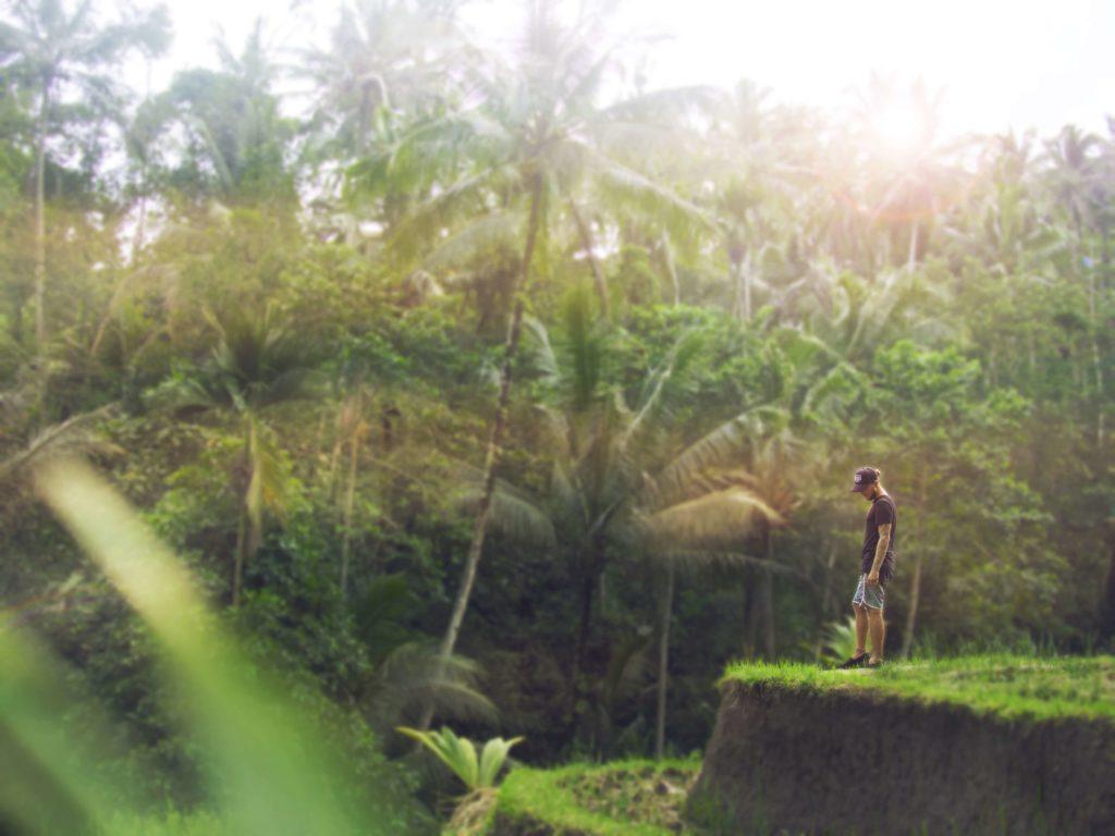 Wat te doen in Ubud, Bali