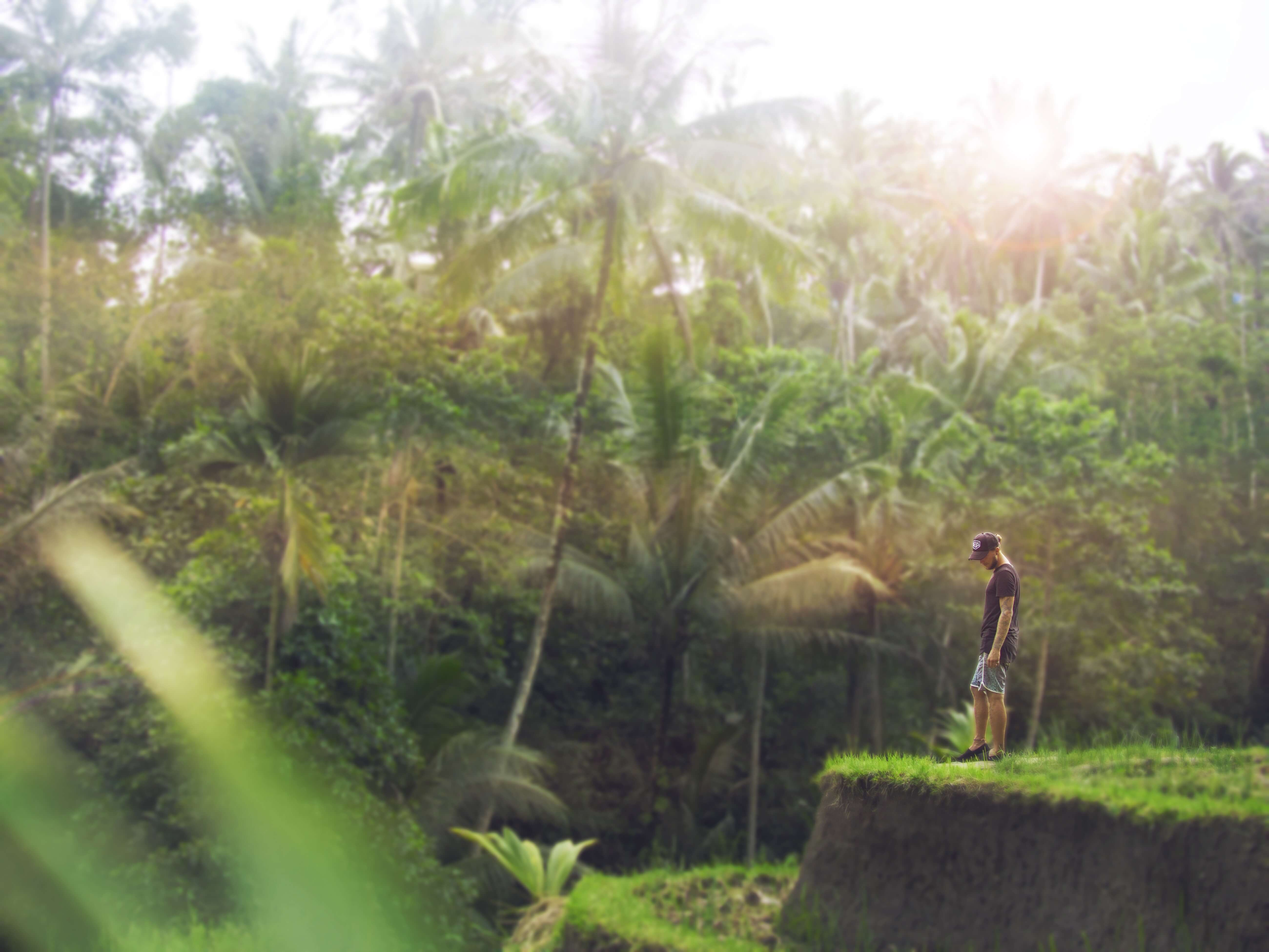 Wat te doen in Ubud, Bali?